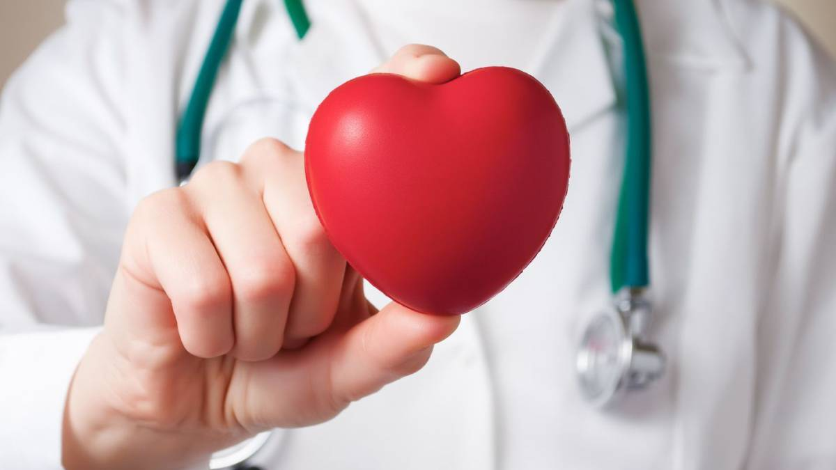 Doctor sostiene un corazón